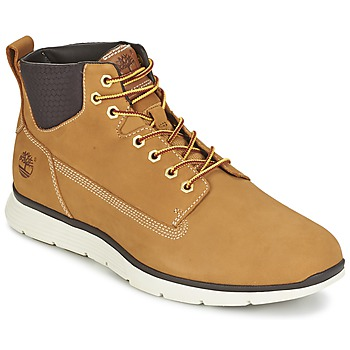 KILLINGTON CHUKKA WHEAT Blé
